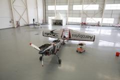 Blades aerobatics team (29)