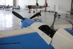 Ramon Alonso Doubles aerobatic team (32)