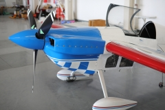 Ramon Alonso Doubles aerobatic team (33)